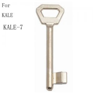 R-098 Zinc Door key blanks Supplier Oscar Xianpai kale-7