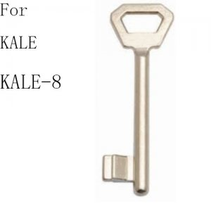 R-099 Zinc House key blanks Supplier oscar kale-8