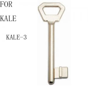 R-094 zinc House key blanks For kale kale-3