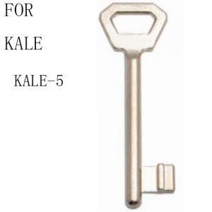 R-096 zinc House key blanks For kale kale-5